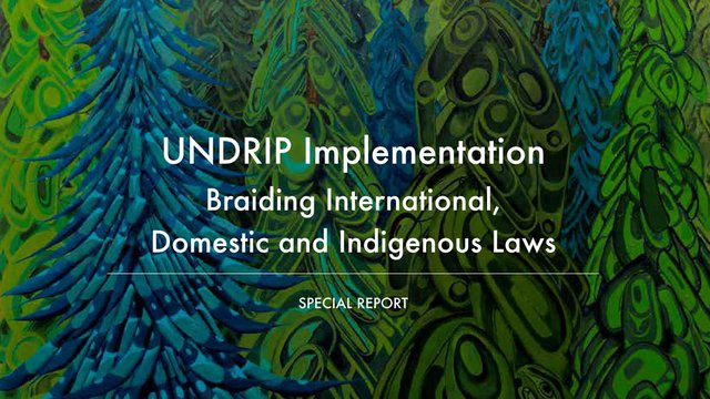 UNDRIP Implementation: Braiding International, Domestic and Indigenous Laws